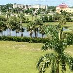 Foto Courtyard by Marriott Fort Myers - Gulf Coast Town Center