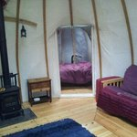 Double yurt birch, view from door