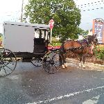  Amish transportation....