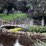  Bridge in city centre park