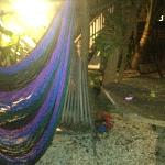 Relax on the hammocks