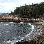 Acadia Coast
