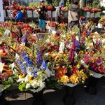 Lake Oswego Farmers' Market