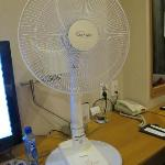  The electric fan in our room