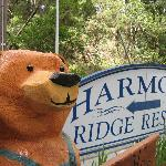 Foto de Harmony Ridge Resort