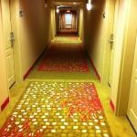 Foto di Hampton Inn & Suites Hartford/East Hartford