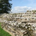 Walls of Calleva Atrebatvm