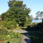  View of Bay of Fundy through the garden and trees