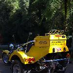 ‪Tableland Trike Tours‬