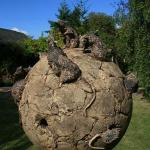  One of Bobbie&#39;s stunning sculptures in the B&amp;B garden.