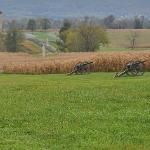  Antietam Battlefield