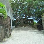  Montpelier Plantation Inn, Nevis - May 20, 2012