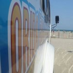 Florida Fun Shuttle - Day Tours
