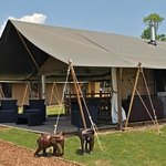 Accommodation at Elephant Lodge