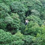  me, ziplining