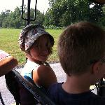 "Recreation: Amish buggy rides - very fun! Many to choose from, we went to ""Ed's"" . 5 stars"
