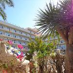 Photo of Bahia del Sol Hotel