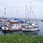Dock at Ventura Harbor