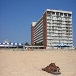 ViewHotel from Beach