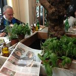  Fresh Basil and Thyme at your table