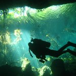 Cenote Tauchen in El Eden mit Playa Scuba Dive Center