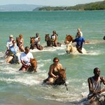 Top Caribbean Tours