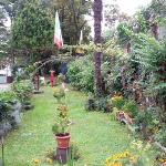  the garden