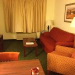 TownePlace Suites Chicago Naperville照片