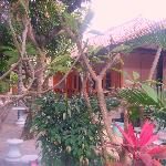 Photo of Senen Beach Inn
