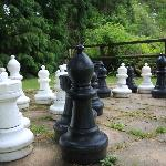 giant chess set in garden