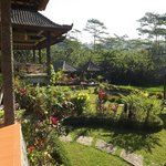 Bilde fra Great Mountain Views Villa Resort
