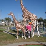 My son and I posing with the giraffes!
