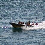 Lulworth RIB Rides
