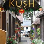 Kush In Morgan CT.