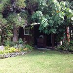 The Artist Cottage at Volcano Garden Artsの写真