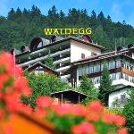 TOP Hotel Waldegg
