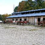 Uncle Buck Stables