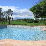  View of the outdoor pool area and Golf Course