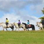 Killarney Riding Stables