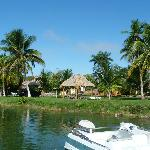 Multiple palapas available on site offer great accomodations
