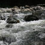 Hearing the waters rushing, loved it