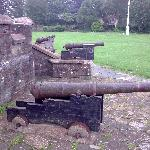 Armadas guns in the park