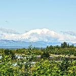  View of elusive Mt. Denali from our porch