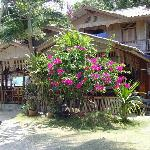 Photo of Thong Yang Bungalows