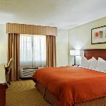 CountryInn&Suites Decatur GuestRoomKing
