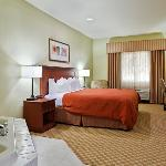 CountryInn&Suites Decatur WhirlpoolSuite
