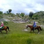 Horseback Mexico - Private Day Tours