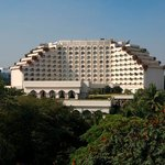 Taj Krishna