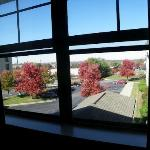 Another view from the window, fall season