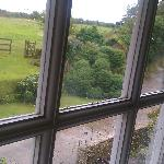 view from the window (kernow)